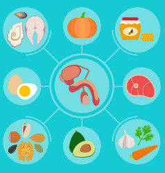 Infographics with foods helpful for male vector