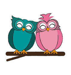 Lovebirds owls icon image vector