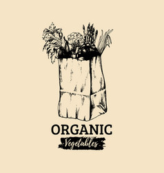 organic vegetables poster logotype farm vector image