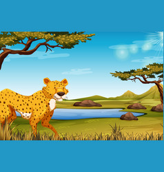 Savanna scene with cheetah vector