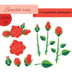 Scarlet rose scrapbook elements vector