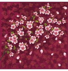Japanese background with sakura blossom vector image