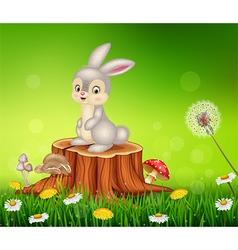 Cute bunny sitting on tree stump vector image