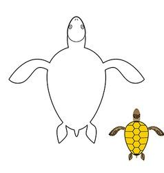 Turtle coloring book Marine reptiles vector image