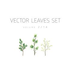Bright watercolor set of leaf vector
