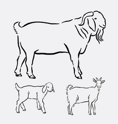 Goat pet animal pose hand drawing vector