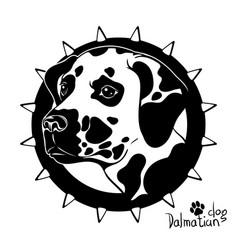 graphic drawing a dog head dalmatian vector image