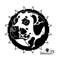 graphic drawing of a dog head dalmatian vector image