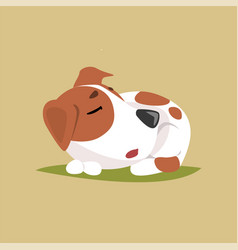 jack russell puppy character sleeping cute funny vector image