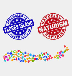 Module flores island indonesia map and distress vector
