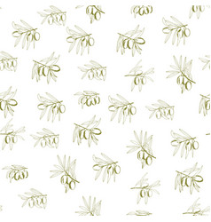 seamless pattern olives vector image