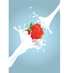 Strawberry milk splash vector