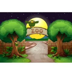 a zoo and owls vector image vector image