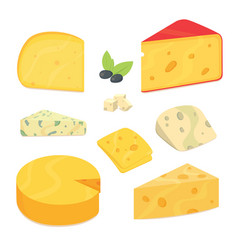 delicious fresh sliced cheese variety icon cheese vector image