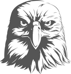 Eagle Silhouettes Front View vector image vector image