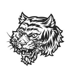 Aggressive tiger head concept vector