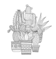 Cacti succulents black and white vector