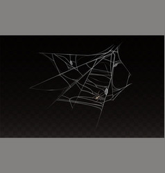 Collection of realistic web with spider vector