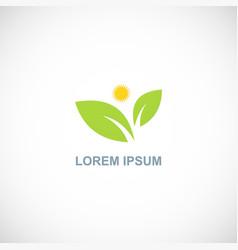 green leaf shine organic logo vector image