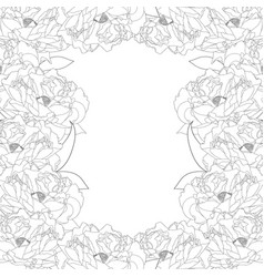 peony flower border vector image