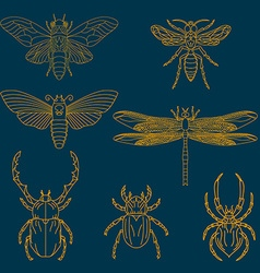 Set of the insects vector