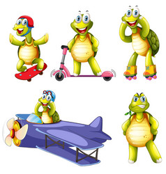 set turtle character vector image