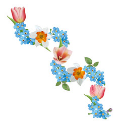 tulip narcissus forget-me-nots vector image