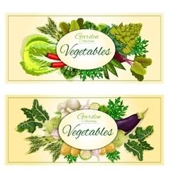 Healthy vegetable banner set with fresh veggies vector image vector image