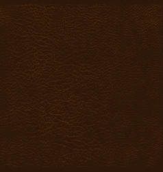 leather texture background vector image
