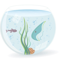 Fish bowl vector