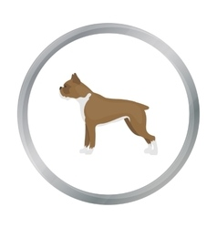 Boxer dog icon in cartoon style for web vector image