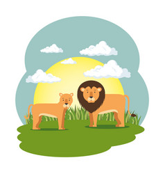 cute lion in the field scene vector image