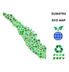 Ecology green mosaic sumatra island map vector
