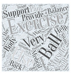 Exercise Balls Word Cloud Concept vector
