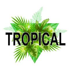 green tropical banner vector image