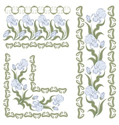 iris pattern vector image