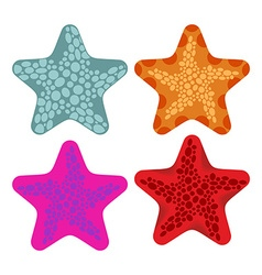 Set colored starfish Animals of ocean vector
