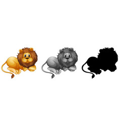 set male lion character vector image