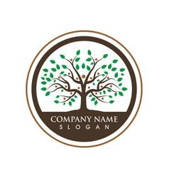 tree icon logo template vector image