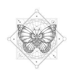 With hand drawn butterfly vector