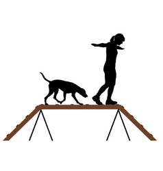 Woman and dog on dogwalk vector