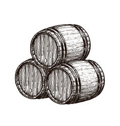 wooden wine barrels winemaking wine cellar vector image
