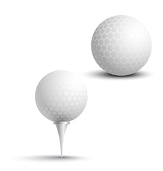 Golf balls on the stand vector image vector image