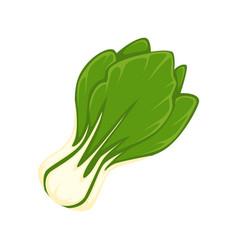 Fresh green salad vector