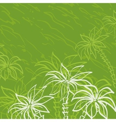 Palm trees contours on green background vector image