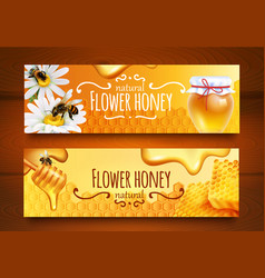 realistic honey banners vector image vector image