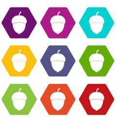 acorn icon set color hexahedron vector image
