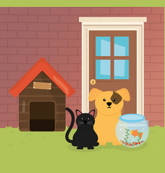 dog cat and fish in bowl house garden pet care vector image