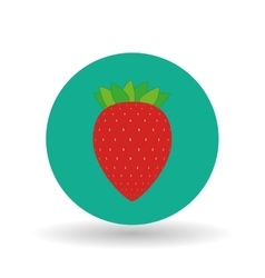 fruit over circle design vector image