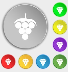Grapes icon sign Symbol on eight flat buttons vector
